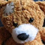 fertiger Teddy