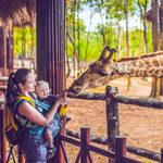 4 Zoos und Tierparks Leipzig in Leipzig und Umgebung